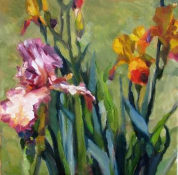 art painting  purple and yellow iris