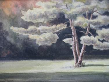 painting of white pine tree