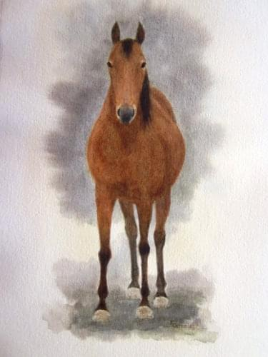 painting of horse from the front