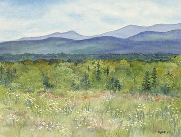 art painting meadow of the adirondacks