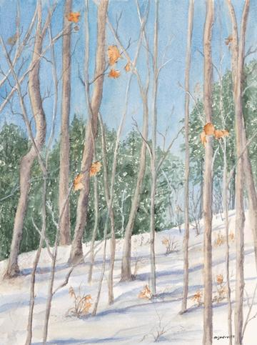 art painting woods in winter with bare trees