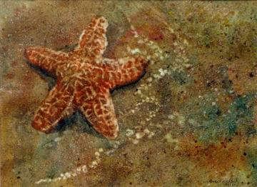 art painting beach with starfish